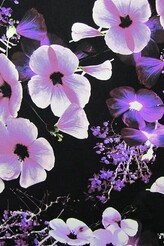Black with purple flowers